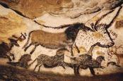 PrehistoricChauvet Cave Paintings1